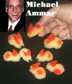 sponge rabits ammar